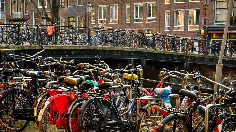 Амстердам рулит
